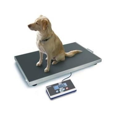 Balance pour animaux KERN EOB avec programme de pesée d'animaux