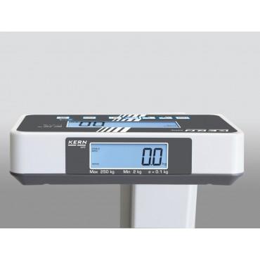 Bilancia pesapersone calibrata Kern MPE 250K100PM con funzione BMI